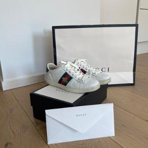 Gucci sneakers. Kvittering osv medfølger. Nypris 3600 kr. byd