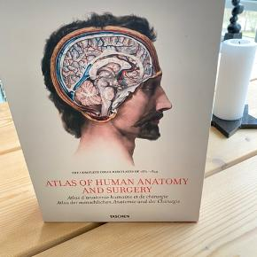 Taschen Atlas of Human anatomy and surgery