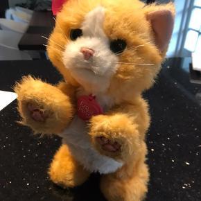 Fin kat fra furreal friends. Nypris 499,- med lys og lyd