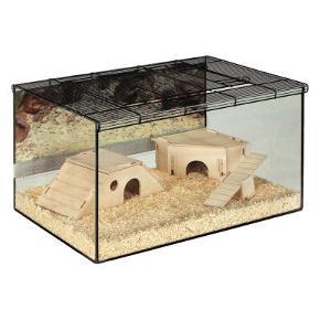 Jeg sælger dette lækre gnaverbur i glas med tilhørende tremmelåg. Buret er super smart til små gnavere som hamstere, ørkenrotter, fedthalemus, mus osv. Selvom de små dyr graver og moser rundt, ryger der ikke savsmuld og hø udover det hele pga. det er glas i stedet for tremmer. Det gør det også nemmere at få øje på dyrene og se alt hvad de foretager sig. Hvis det ønskes kan min fedthalemus og hans tilbehør købes med buret, spørg endelig for billeder. Mål: L 75 x B 45 x H 37 cm