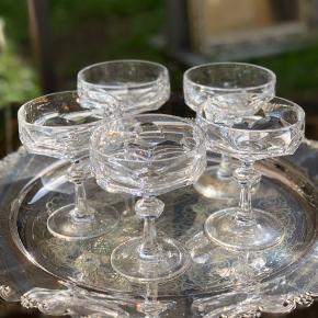 Nachtmann krystal  Byd stilfuldt på lækker champagne med disse fantastisk smukke og antikke champagneskåle i krystal. Flotte slibninger i en kraftig kvalitet, der ikke laves mere.  Højde 13cm Diameter 9,5cm Prisen er for alle 5