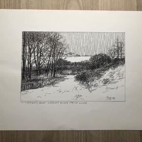 """Tegning/grafik af Erik Holbech Mortensen """"Hindsgavls skov - udsigt over Fænøsund""""  Størrelse: 30x40 cm.   Enkelte håndteringsspor.   Sender gerne 👀"""
