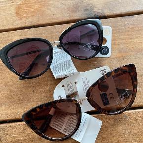 Primark solbriller