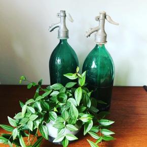Smukke patinerede glas sifonflasker i skøn grøn 💚💚💚Pris pr. stk. 250,- kr.