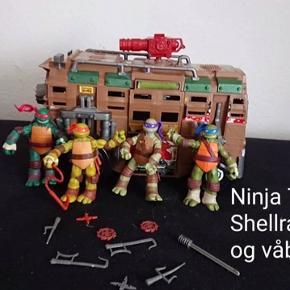 Ninja Turtles + div.