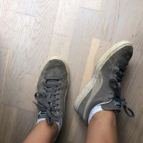 Sælger mine grå puma sko  Str. 37   Spørg endelig for flere billeder