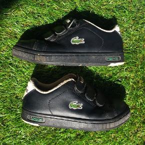 LACOSTE Sport Andre sko til drenge