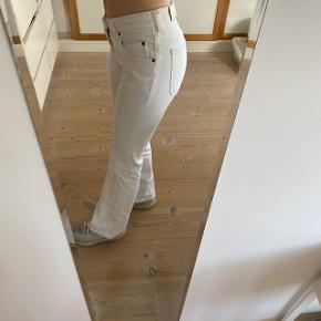 Sælger mine Lee jeans, da jeg ikke får dem brugt. De fejler ingenting.  Bukserne passer en, som cirka er en 162-165.  Kom med et bud.