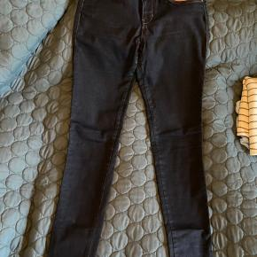 Educe jeans