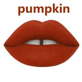 Lime Crime Matte Velvetines - flydende læbestift, som giver det helt perfekte matte look.  Farven er Pumpkin, som er en knækket/rustrød nuance.  Ny og helt ubrugt, 1,7 ml. mini (full size er 2,6 ml.)  Sælges for 25 kr. + porto (10 kr. som B-brev ved handel via mobilepay)  Bytter ikke.