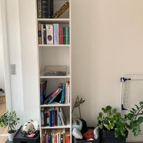 Sælger 2 stk af disse IKEA reoler. Denne har det fint. Men den anden har rust pletter fra en plante på toppen hvilket ikke kan ses, med mindre man er 2meter 😅 der er også en rigtig fin glas plade med til den ene. De koster 120kr stk. Også med glaspladen. Sælger pga flytning.