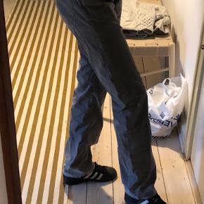 GANT bukser