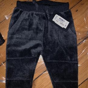 Bukser fra Petit i str.74. Jeg sælger også trøjen der passer til. Super lækre i blød, grå velour. Helt nye med prismærke.Nypris 199,-