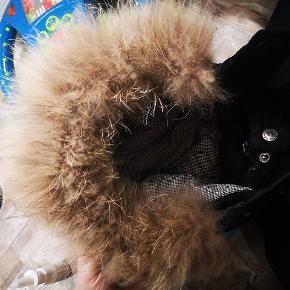 Fremstår rigtig fin og pelsen er stadig dejlig. Der står navn I som sikkert kan fjernes