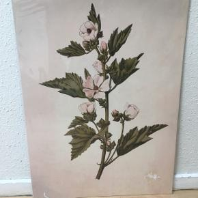 Flot plakat sælges i original indpakning 🌸Måler 60 x 42 cm🌸🌞