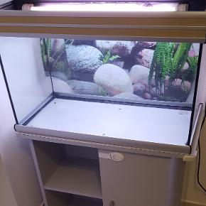 Aquarium avec meuble 80 cm x 50cm x 40cm