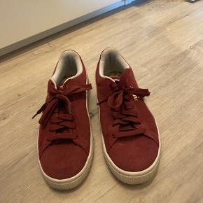 Lille skramme fortil på sko til Venstre fod, ellers super flotte og sælges da jeg ikke får dem brugt