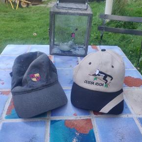 Stussy Hue & hat