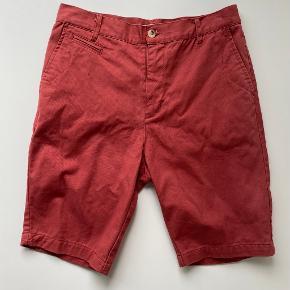 Suit Shorts