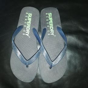 Superdry andre sko