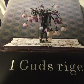 I Guds Rige. Anne-Grethe Bjarup Riis
