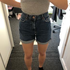 PIECES shorts