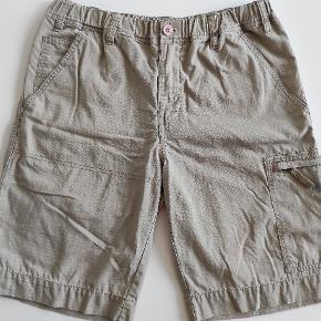 H2O shorts