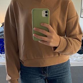 Oysho sweater
