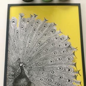 Billede str: 52,5 x 72,5 cmI sort ramme med glas. Nypris 599kr Aldrig brugt.   Billeder i fuld størrelse ses i kommentar. (Tryk på billedet)