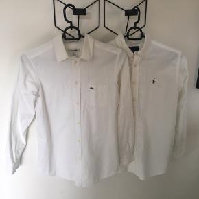 Hvid Lacoste skjorte str.12 år.