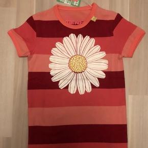 Ny flot danefæ t-shirt. Str 5 år men stor i str. Passer str 116/122. Nypris 230kr
