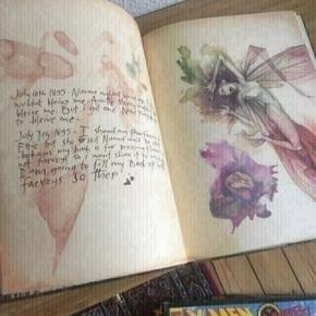 Lady cottington's pressed fairy book  -fast pris -køb 4 annoncer og den billigste er gratis - kan afhentes på Mimersgade 111 - sender gerne hvis du betaler Porto - mødes ikke andre steder - bytter ikke