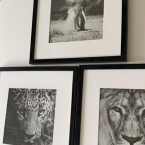 3 billeder fra ide møbler. Som ny
