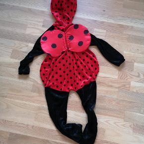 Mariehøne kostume, udklædning str 100 cm. I blød velour.