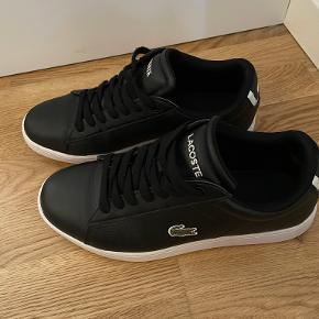 LACOSTE sneakers