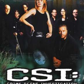 7404 - Csi : crime scene investigation The complete fifth season (DVD) Dansk Tekst - I FOLIE