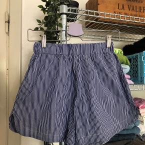 MSCH Copenhagen shorts