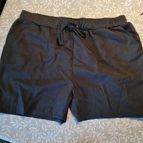 Ofelia shorts