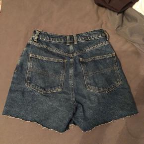 COLLUSION shorts