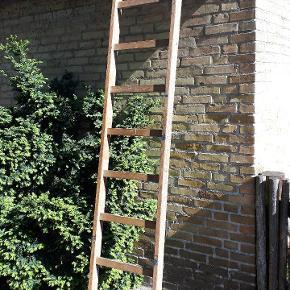 Stor træ stige med brugsspor, men den er stabil. 266 cm x 47 cm.