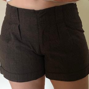 Long Island Shorts