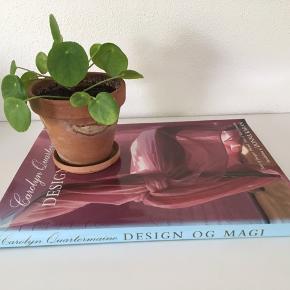 Design & magi Carolyn Quartermaine Fotos af Jacques Dirand Tekst af Kate Constable Introduktion af Donna Karan.
