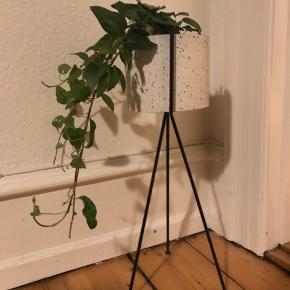 40cm høj  Potteskjuler 15,5 i diameter   Får den ikk brugt, så den ska ha et nyt hjem.  Planten er i for billedes skyld.