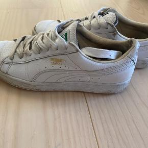 Hvide Puma sko. Trænger til nye snørebånd. Skrive for flere billeder.
