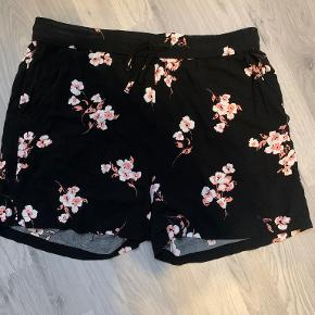 B.young shorts