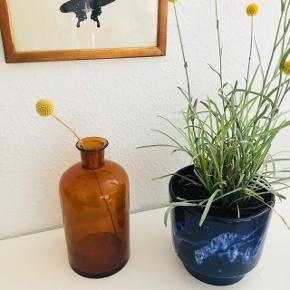 Smuk vintage røgfarvet flaske 😍🙌🏼 perfekt stand. Flasken har en super fin form med den skønneste gule farve. Proppen på billede 2 kan evt. købes med, den koster 40 kr 💘 måler ca. 21 cm i højden  Bemærk - Sendes med DAO eller afhentning ved Harald Jensens Plads, bytter ikke og sender ikke billeder med varen på ⭐️☺️ Jeg handler som udgangspunkt med Tradonos handelssystem - for din og min sikkerhed & Danmarks billigste forsendelse 💘🌸  ⭐️ retro flaske gul loppefund glas