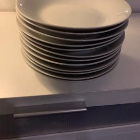 12 middags tallerkner  Pæn stand uden skår   Sendes ikke. Hentes i 4293 Dianalund.