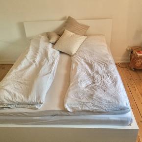 Hvid IKEA MALM dobbeltseng med opbevaringsskuffer sælges. Madrasser kan medkøbes. Topmadres kan ikke medkøbes. Nypris: 2500,-  Mål: Længde: 2.10m Bredde: 1.75m Skuffer: 1m x 60cm  Giv eventuelt rimeligt bud.
