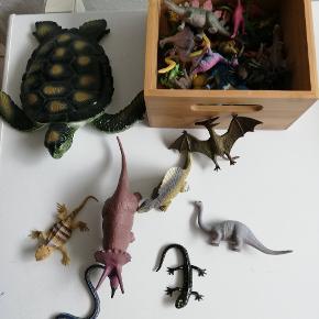 Forskellige dyr