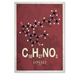Molekylen chili plakat, 30x40cm